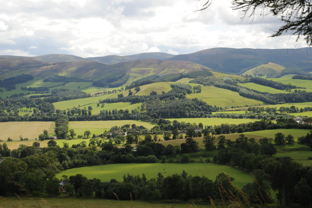The Beautiful Scottish Borders with fields bathed in sunshine and surrounded by trees in the foreground, and heather-covered hills in the distance.