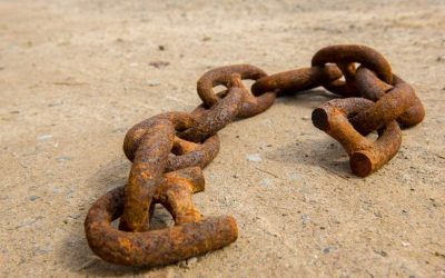 Getting Started with Broken Link Building