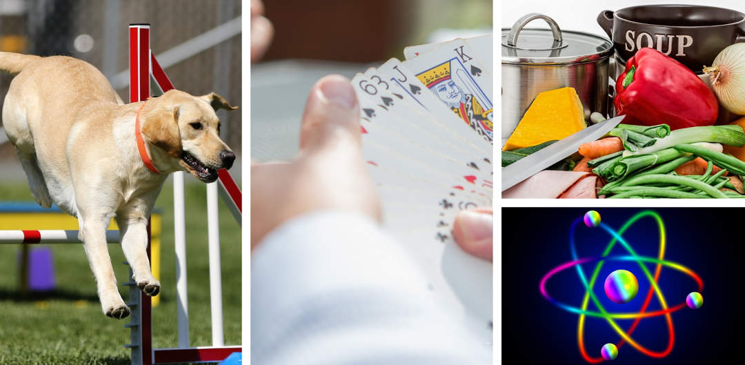 Montage of photos of different subjects. On the left, a golden labrador do jumping over a fence, in the middle hands holding playing cards, top right pots and vegetables for making soup and bottom-right an artists impression of an atom.